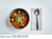 Купить «seafood soup with fish and blue mussels in bowl», фото № 25057633, снято 16 января 2017 г. (c) Syda Productions / Фотобанк Лори