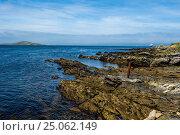 Купить «View over Carcass Island, Falkland Islands, South America», фото № 25062149, снято 15 февраля 2016 г. (c) age Fotostock / Фотобанк Лори