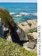 Купить «Summer blossoming Atlantic coast (Galicia).», фото № 25064113, снято 11 мая 2016 г. (c) Юрий Брыкайло / Фотобанк Лори