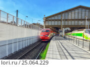 PARIS, FRANCE - JULY 07, 2016 : Modern speed passenger train on railways station Gare De Nord ( Nothern Railways Station) in Paris. Стоковое фото, фотограф Vitas / Фотобанк Лори
