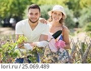 Купить «Young family gardening», фото № 25069489, снято 19 марта 2019 г. (c) Яков Филимонов / Фотобанк Лори