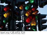 Купить «Светофор», фото № 25072721, снято 23 августа 2016 г. (c) Дмитрий Сидоров / Фотобанк Лори