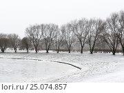 Купить «Санкт-Петербург. Оттепель. Парк Малиновка», эксклюзивное фото № 25074857, снято 28 января 2017 г. (c) Александр Щепин / Фотобанк Лори