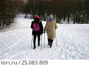 Купить «Две женщины с трекинговыми палками идут по зимнему парку. Зима, Битцевский лесопарк. Москва, Северное Чертаново», эксклюзивное фото № 25083809, снято 29 января 2017 г. (c) Щеголева Ольга / Фотобанк Лори