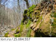 Купить «Вода стекает с камней поросших зелёным мхом», фото № 25084557, снято 29 марта 2014 г. (c) Выскуб Анна / Фотобанк Лори
