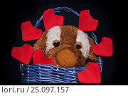 Handmaid basket with plushy dog and red origami hearts for Saint Valentine's Day on black background (2017 год). Редакционное фото, фотограф Жданова Дарья Юрьевна / Фотобанк Лори