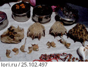 Купить «Nails and paws of Tigers and Leopards for sale Delhi India», фото № 25102497, снято 21 июля 2018 г. (c) Nature Picture Library / Фотобанк Лори
