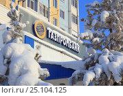 """Купить «Вывеска """"Газпромбанк"""" на офисе банка в городе Надым, Ямало-Ненецкий автономный округ», эксклюзивное фото № 25104125, снято 9 февраля 2017 г. (c) Григорий Писоцкий / Фотобанк Лори"""