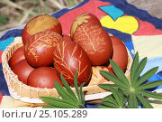 Colored Easter eggs with pattern in a bowl. Стоковое фото, фотограф Мария Северина / Фотобанк Лори