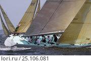 "Купить «12m yacht, ""Courageous"" racing.», фото № 25106081, снято 9 апреля 2020 г. (c) Nature Picture Library / Фотобанк Лори"