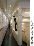 Купить «Precious sculptures line the ultra modern and sleek corridor on the 35-metre Gaia motoryacht model, created by Cantieri Maiora, Italy.», фото № 25107597, снято 16 июля 2018 г. (c) Nature Picture Library / Фотобанк Лори