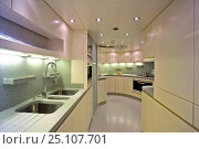 Купить «A kitchen onboard the 35-metre Gaia motoryacht model, created by Cantieri Maiora, Italy.», фото № 25107701, снято 16 июля 2018 г. (c) Nature Picture Library / Фотобанк Лори