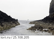 """Купить «View from the Isle of Staffa (""""Pillar Island""""), with the formations of black basalt columns that make the island so unique.», фото № 25108205, снято 15 августа 2018 г. (c) Nature Picture Library / Фотобанк Лори"""