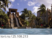 Купить «Challenger twin water Slides at the Atlantis Resort's Mayan Temple on Paradise Island in the Bahamas. December 2007», фото № 25108213, снято 27 мая 2018 г. (c) Nature Picture Library / Фотобанк Лори