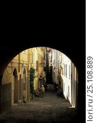 Купить «Narrow cobbled road in the historical centre of Alghero, Sardinia, Italy.», фото № 25108889, снято 25 мая 2018 г. (c) Nature Picture Library / Фотобанк Лори