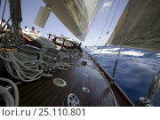 """J-Class """"Velsheda"""" racing at Antigua Classic Yacht Regatta 2005, Caribbean. Стоковое фото, фотограф Onne van der Wal / Nature Picture Library / Фотобанк Лори"""