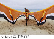 World champion kitesurfer, Jeremie Eloy, preparing his kite on the beach. Hawaii, February 2003., фото № 25110997, снято 28 февраля 2017 г. (c) Nature Picture Library / Фотобанк Лори