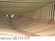 Купить «Wooden frame of the hull of a 38-metre wooden motorboat, being constructed at a boatbuilders in Fiumicino, Rome. ^^^It is rare today to see big boats such as this made of wood.», фото № 25111177, снято 16 июля 2018 г. (c) Nature Picture Library / Фотобанк Лори