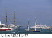 Купить «Yachts, tall ships and ferries in the busy Solent during the America's Cup Jubilee celebrations in 2001, Isle of Wight, UK.», фото № 25111477, снято 26 января 2020 г. (c) Nature Picture Library / Фотобанк Лори