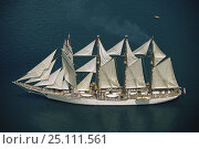 Купить «Aerial view of tall ship 'Esmeralda' under full sail.», фото № 25111561, снято 14 ноября 2019 г. (c) Nature Picture Library / Фотобанк Лори
