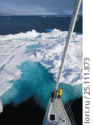 """Купить «Mast view of the crew of 88ft sloop superyacht """"Shaman"""" watching from the bow as the yacht approaches a large iceberg, Spitsbergen, Svalbard, Norway.», фото № 25111873, снято 20 июля 2019 г. (c) Nature Picture Library / Фотобанк Лори"""