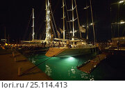 Купить «Superyachts lit up at night in Gustavia during the St Barts Bucket, Caribbean.», фото № 25114413, снято 8 декабря 2019 г. (c) Nature Picture Library / Фотобанк Лори