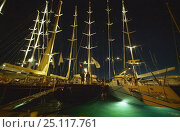 Купить «Superyachts lit up at night in Gustavia during the St Barts Bucket, Caribbean.», фото № 25117761, снято 8 декабря 2019 г. (c) Nature Picture Library / Фотобанк Лори