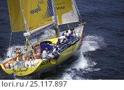 Купить «Team EF, Whitbread Round the World Race, 1997.», фото № 25117897, снято 9 апреля 2020 г. (c) Nature Picture Library / Фотобанк Лори