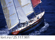 """Купить «84ft Bruce Farr ketch """"Steinlager"""", skippered by Peter Blake, in the Whitbread Round the World Race, 1989. It was the winner.», фото № 25117901, снято 9 апреля 2020 г. (c) Nature Picture Library / Фотобанк Лори"""