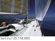 Купить «The Card experiences some windless conditions during the Whitbread Round the World Race, 1989.», фото № 25118093, снято 25 мая 2018 г. (c) Nature Picture Library / Фотобанк Лори