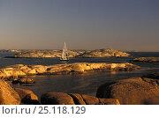 Купить «Cruising boat navigates around the many islands of the Swedish Archipelago.», фото № 25118129, снято 20 сентября 2018 г. (c) Nature Picture Library / Фотобанк Лори