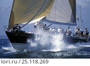 "Купить «Sparkman and Stephens 72ft ""Encore"" at an NYYC regatta, 1994.», фото № 25118269, снято 9 апреля 2020 г. (c) Nature Picture Library / Фотобанк Лори"