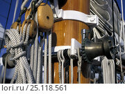 """Купить «Detail of one of the masts of the classic 168ft gaff rigged schooner, """"Shenandoah"""", originally built in New York in 1902. Auckland, 2000.», фото № 25118561, снято 16 августа 2018 г. (c) Nature Picture Library / Фотобанк Лори"""