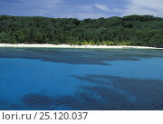 Купить «West End Bay, Roatan, Honduras.», фото № 25120037, снято 7 августа 2020 г. (c) Nature Picture Library / Фотобанк Лори