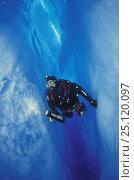 Купить «Diver swimming in flooded glacial crevasse, Perito Moreno glacier, Patagonia, Argentina.», фото № 25120097, снято 16 января 2019 г. (c) Nature Picture Library / Фотобанк Лори