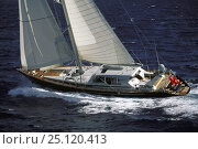 "Купить «123ft sloop superyacht ""Helios"" racing in Antigua, Caribbean.», фото № 25120413, снято 18 августа 2018 г. (c) Nature Picture Library / Фотобанк Лори"