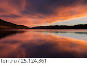 Купить «Loch Beinn a Mheadhain at dawn, Glen Affric National Nature Reserve, Highland, Scotland, November 2015.», фото № 25124361, снято 24 мая 2018 г. (c) Nature Picture Library / Фотобанк Лори