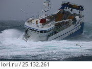 Купить «Fishing vessel 'Harvester' battling in a winter storm on the North Sea, February 2016. Property released.», фото № 25132261, снято 21 мая 2018 г. (c) Nature Picture Library / Фотобанк Лори
