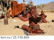 Купить «Himba woman greeting and talking to her neighbours in the morning at temporary village in the dry season, Marienfluss Valley, Kaokoland Desert, Namibia. October 2015», фото № 25139869, снято 2 июля 2020 г. (c) Nature Picture Library / Фотобанк Лори