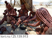Купить «Himba women eating, Marienfluss Valley, Kaokoland Desert, Namibia. October 2015», фото № 25139913, снято 26 мая 2019 г. (c) Nature Picture Library / Фотобанк Лори
