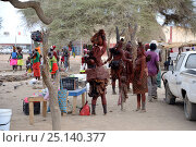 Street market with Himba women and children, city of Opuwo, Kaokoland, Namibia. October 2015. Стоковое фото, фотограф Eric Baccega / Nature Picture Library / Фотобанк Лори