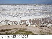 Купить «Stormy waves on the shore, Berck, Pas De Calais, France, May 2015.», фото № 25141305, снято 15 августа 2018 г. (c) Nature Picture Library / Фотобанк Лори