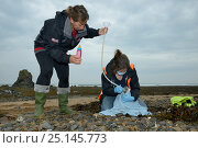 Купить «Rachel Shorland and Michelle Clement, British Divers Marine Life Rescue animal medics, giving rehydration fluids to a very weak, injured, Grey seal pup...», фото № 25145773, снято 18 августа 2018 г. (c) Nature Picture Library / Фотобанк Лори