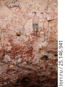 Petroglyphs and rock paintings of Santa Marta, which depict people and animals (including deer, rabbits, fish, more). Baja, Mexico. Стоковое фото, фотограф Brandon Cole / Nature Picture Library / Фотобанк Лори
