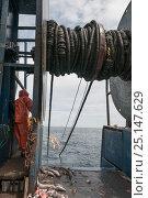 Купить «Hauling in dragger net filled with Haddock (Melanogrammus aeglefinus), Pollock (Pollachius), Dogfish (Squalidae) and Lobster (Nephropidae) Georges Bank...», фото № 25147629, снято 27 марта 2019 г. (c) Nature Picture Library / Фотобанк Лори