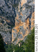 Купить «House in gorge next to steep cliff, Moustiers-Ste-Marie Village, Gorges du Verdon Natural Park, Alpes Haute Provence, France, June 2015.», фото № 25150201, снято 21 августа 2018 г. (c) Nature Picture Library / Фотобанк Лори