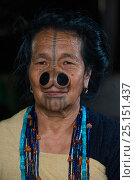 Купить «Apatani woman with facial tattoos and traditional cane nose plugs / Yapin Hulo made to make them look unattractive to males from other tribes. These facial...», фото № 25151437, снято 27 мая 2019 г. (c) Nature Picture Library / Фотобанк Лори