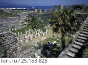 Купить «Inside the castle of the knights, Kos, Dodecanese Islands, Greece», фото № 25153825, снято 23 июля 2018 г. (c) Nature Picture Library / Фотобанк Лори