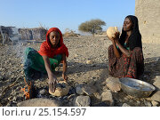 Купить «Afar tribe women baking bread with a hot stone on open fire, Malab-Dei village, Danakil depression, Afar region, Ethiopia, March 2015.», фото № 25154597, снято 5 августа 2020 г. (c) Nature Picture Library / Фотобанк Лори