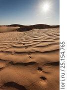Купить «Fennec fox (Vulpes zerda) tracks on sand dune. Grand Erg Oriental, Kebili Governorate. Tunisia.», фото № 25154765, снято 21 ноября 2019 г. (c) Nature Picture Library / Фотобанк Лори